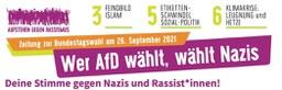 """Aktionszeitung zur Bundestagswahl """"Wer AfD wählt, wählt Nazis"""""""