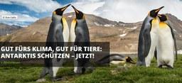 Werden Sie Antarktisschützer